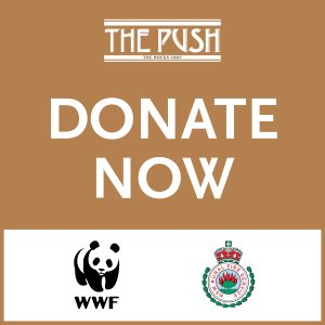 Bushfire Fundraisers The Push